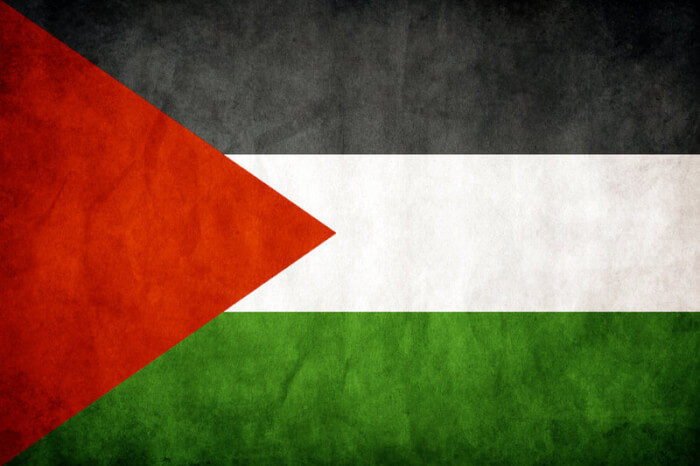 Lincolnwood Mayor defends display of Palestine Flag in Chicago suburb