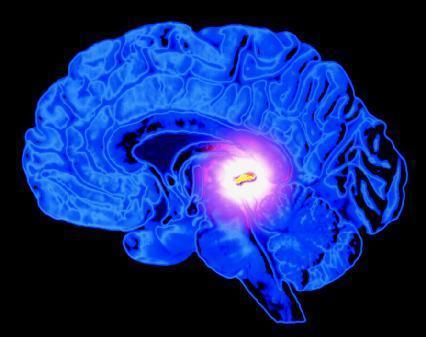 The Third Eye Medical Science and #YogaNidra