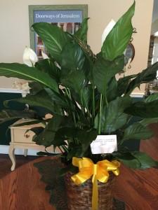 USSLIBERTYflowers