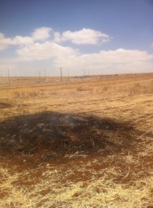 Jewish settler terrorists burn Christian Arab land at the only Christian village int he Israeli occupied West Bank, Taybeh