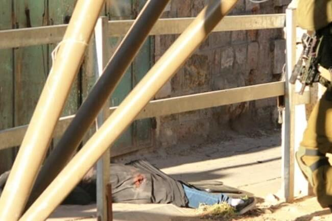 Suffer the Children:Israel's Ripping at the Roots of Palestine