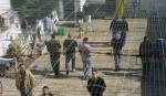 prisoners (1)