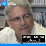 A tribute to my friend David J. Steiner