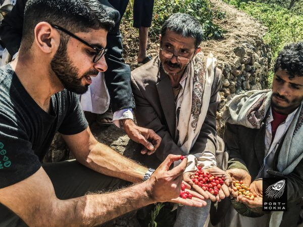 Podcast: Yemeni Coffee During the War