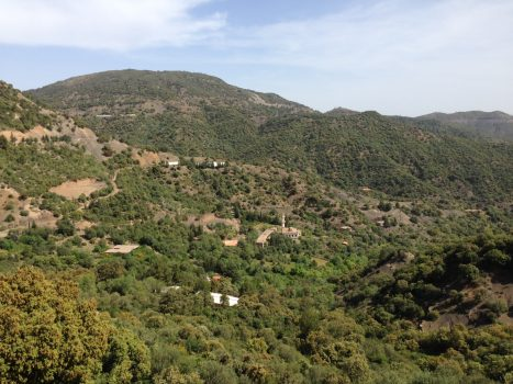 Algeria countryside. Photo courtesy of Abdennour Toumi