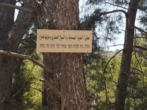 "Arabic and Hebrew sign posted in site of former village reads​: ""Ma'alul - Christian cemetery is behind fence. Access is forbidden"" (Photo by Adalah)​"