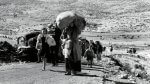 Palestinian refugees fleeing Israeli and Zionist violence during Israelis war against Palestinians in 1947-1948