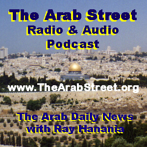 Arab Radio: Ray Hanania and Ali Younes on Arabs running for Congress in 2020