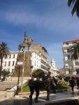 How Political Incorrectness Made Algerians Hate Politics