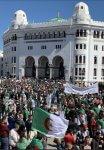 Algeria: Freedom and Shakespeare