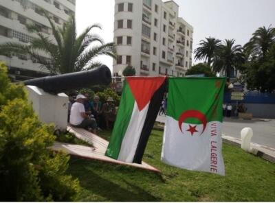 Friday XVII, Algerian Protests Courtesy Haroun Hamadou