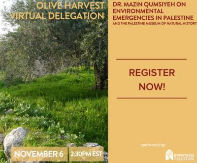 Join the Virtual Delegation in an online presentation on Palestine