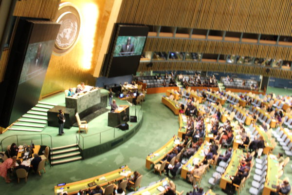United Nations General Assembly 74, Sept. 2019. Photo courtesy Ray Hanania