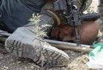Israeli soldiers abuse civil rights of Palestinians everyday. Photo courtesy of the Good Shepherd Collective